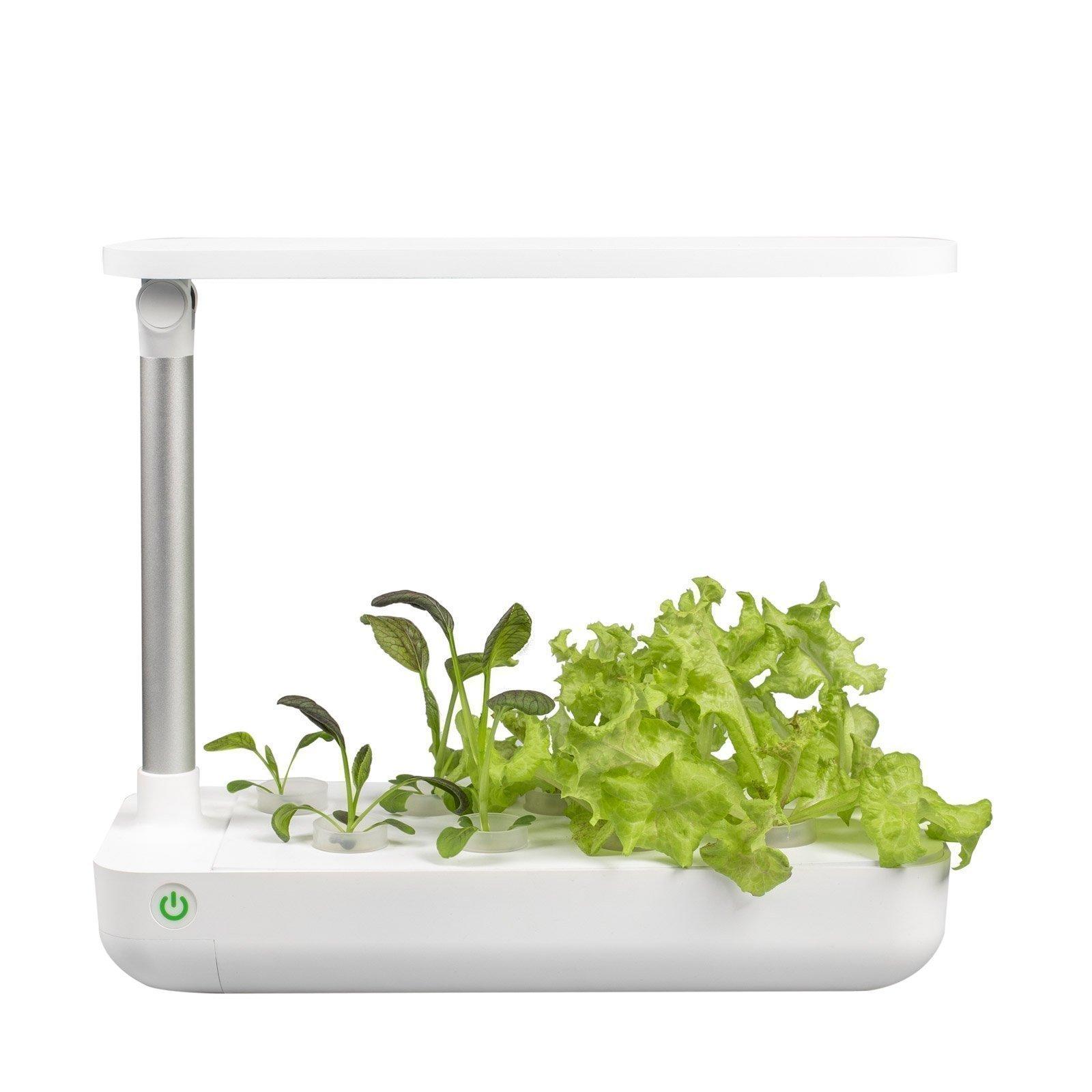 Vegebox™ Table - Indoor Hydroponic Garden